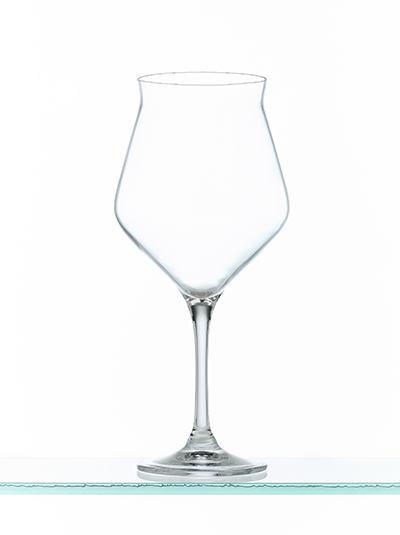 copa-lip45-tecnica